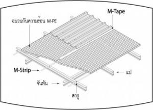 m-strip